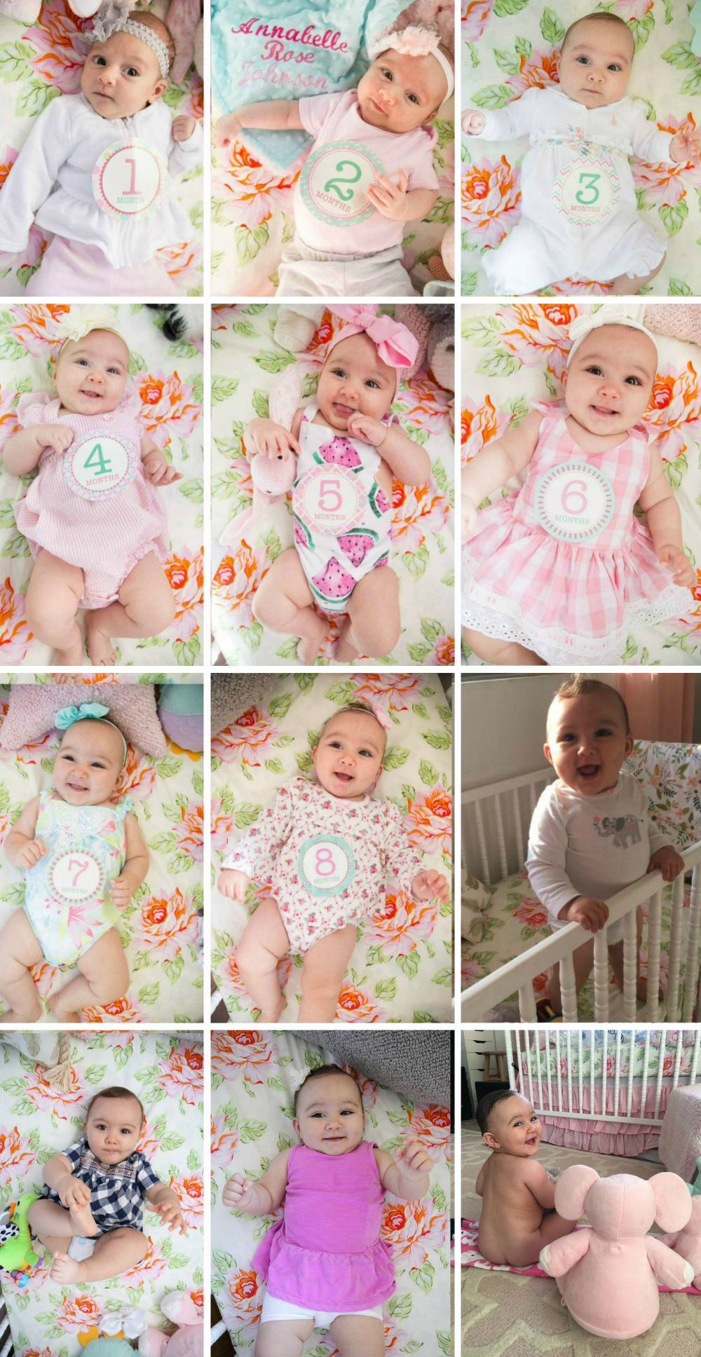 12 MONTHS OF ANNABELLE